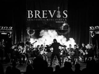 Концерт Симфонический оркестр «BREVIS» в Черкассах - 4