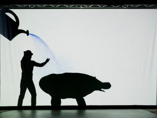 спектакль Театр Теней «Teulis» в Одессе - 4