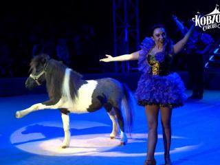 Концерт Шоу нового поколения Ангелы цирка. Цирк Кобзов в Запорожье - 2