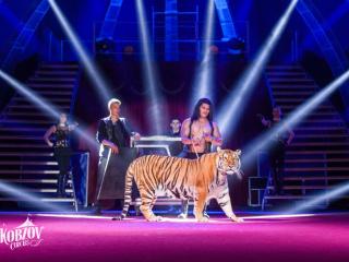 Концерт Шоу нового поколения Ангелы цирка. Цирк Кобзов в Запорожье - 3