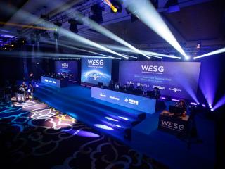 фестиваль Чемпионат мира по компьютерным играм. WESG. Финальный этап Европа и СНГ в Киеве - 14