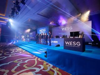 фестиваль Чемпионат мира по компьютерным играм. WESG. Финальный этап Европа и СНГ в Киеве - 16