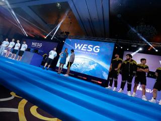 фестиваль Чемпионат мира по компьютерным играм. WESG. Финальный этап Европа и СНГ в Киеве - 4