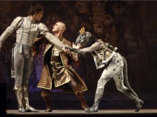 спектакль «Киев.модерн-балет» Раду Поклитару спектакль «Щелкунчик» в Харькове - 3