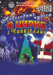 Новогодние чудеса в цирке Чинизелли