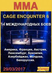 Международный турнир по MMA