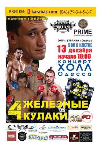 фестиваль Турнир по смешанным единоборствам в Одессе