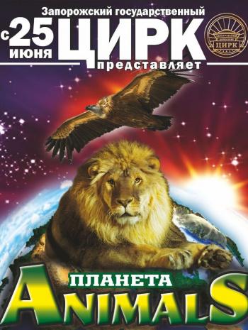 цирковое представление Цирк в Запорожье